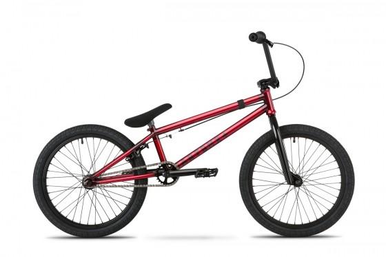 Bike_Ozzy_1.jpg