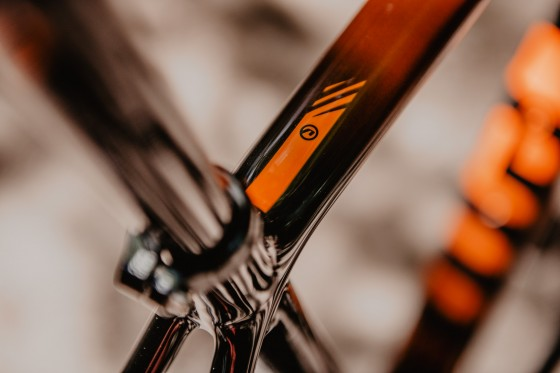 accent_bikes_cyclocross_CX_One_Carbon_TGR_11