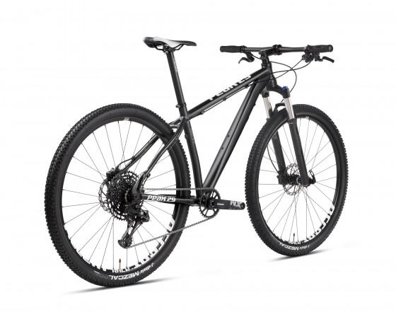 accent_bikes_peak_ta_nxeagle_3
