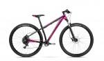 accent_bikes_peak_nxlady